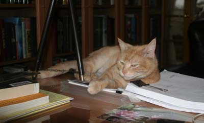 Newton unimpressed with manuscript. © Colehaus Cats.